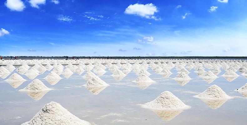 Meersalz Herstellung